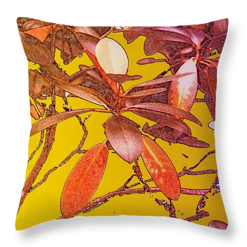 Red Throw Pillow featuring the photograph Red Leaves Gold Sunset by Ian MacDonald