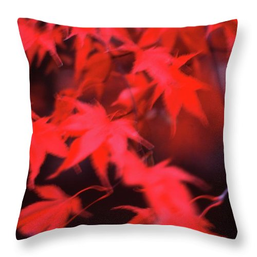 Abstract Throw Pillow featuring the photograph Red Leaves In Fall by Lyle Crump