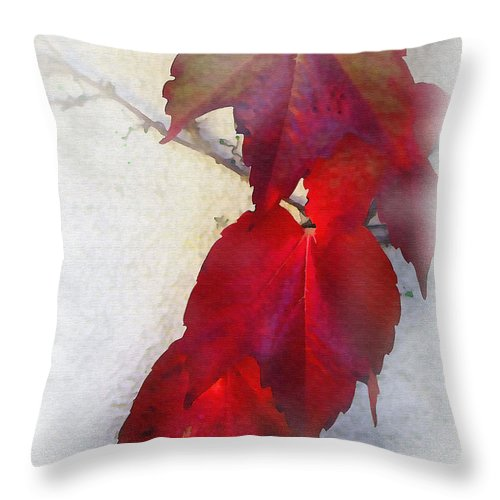 Nature Throw Pillow featuring the photograph Red Leaves by Sharon Foster