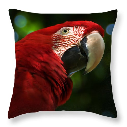 Red Throw Pillow featuring the photograph Red Macaw 2 by Bibi Rojas