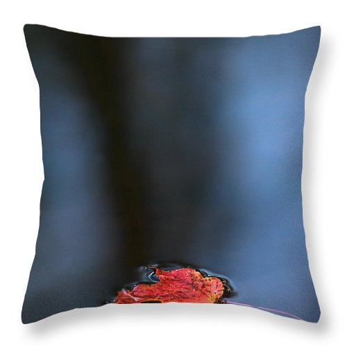 Maple Leaf Throw Pillow featuring the photograph Red Maple Leaf In Water by Steve Somerville