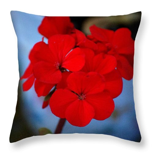 Throw Pillow featuring the photograph Red Menace by David Lane