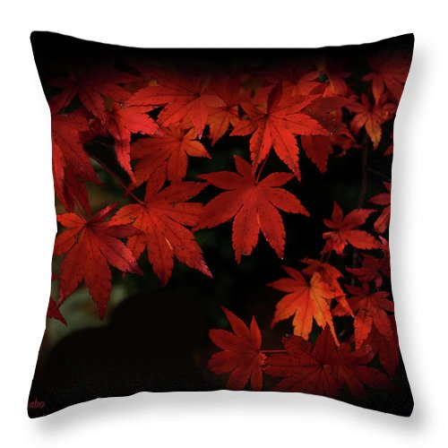 Red Throw Pillow featuring the photograph Red Momiji by Eena Bo