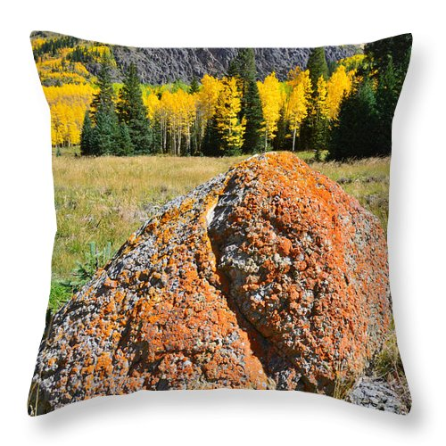 Colorado Throw Pillow featuring the photograph Red Mountain Boulder by Ray Mathis