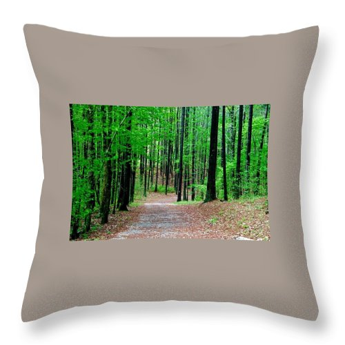 Throw Pillow featuring the photograph Red Mountain Trail by Richard Brooke