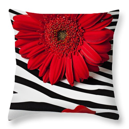 Red Throw Pillow featuring the photograph Red Mum And Red Lips by Garry Gay