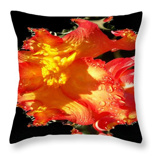 Flowers Throw Pillow featuring the digital art Red N Yellow Flowers by Tim Allen