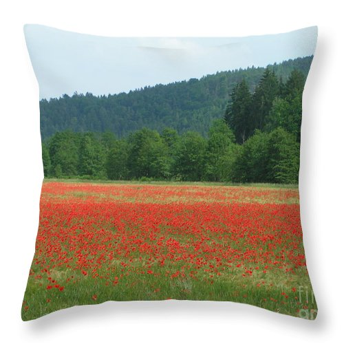 Poppies Throw Pillow featuring the photograph Red Poppies by Karen Granado