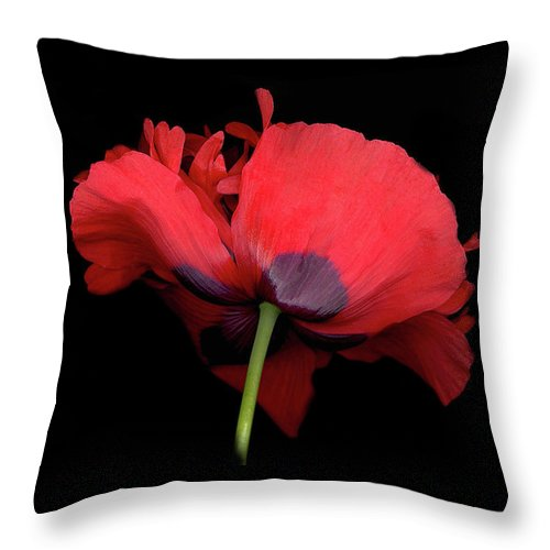Red Poppy Throw Pillow featuring the digital art Red Poppy by Sandi F Hutchins