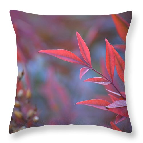 Red Throw Pillow featuring the photograph Red Red Leaves by Mark Bell