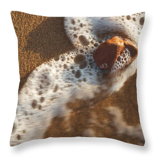 Nature Throw Pillow featuring the photograph Red Rock And Surf by Steve Somerville