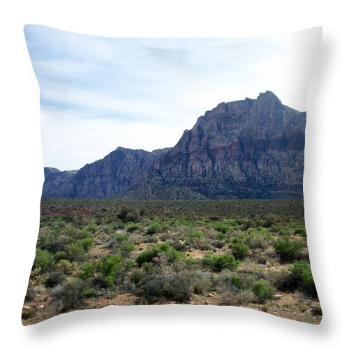 Red Rock Canyon Throw Pillow featuring the photograph Red Rock Canyon 3 by Anita Burgermeister
