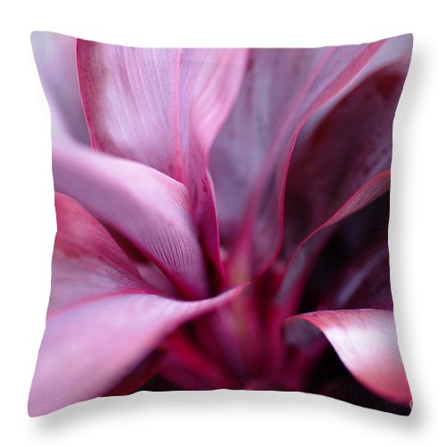 Hawaii Throw Pillow featuring the photograph Red Ti-leaf Macro by Charmian Vistaunet