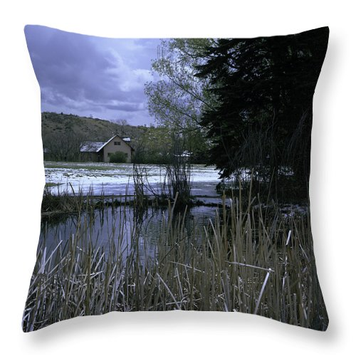 Rock Ledge Ranch Throw Pillow featuring the photograph Reeds by Rachael Armstead