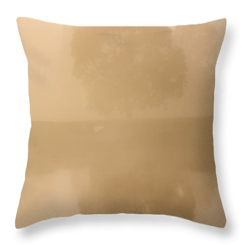 Reflection Throw Pillow featuring the photograph Reflected Gum Sunrise by Mike Dawson