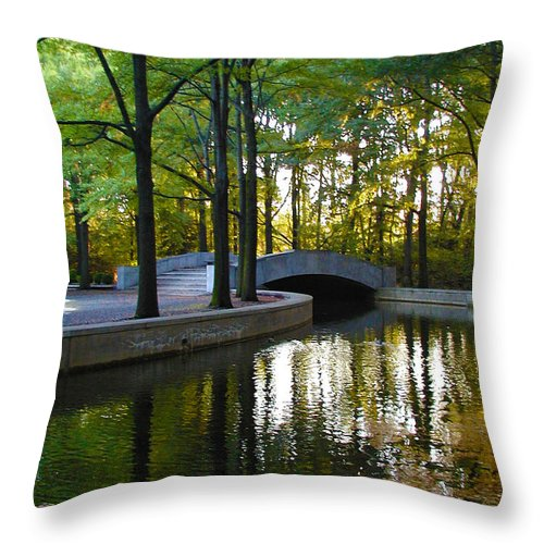 Washington Throw Pillow featuring the photograph Reflecting Pool Roosevelt Park by Bill Cannon