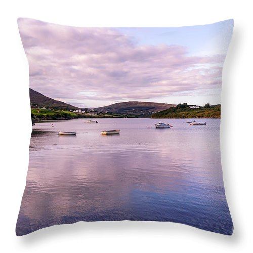 Ireland Throw Pillow featuring the photograph Reflecting by Ric Schafer