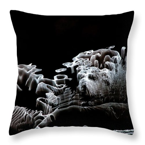 Abstract Art Throw Pillow featuring the photograph Reflection Abstract 431 by Craig Royal