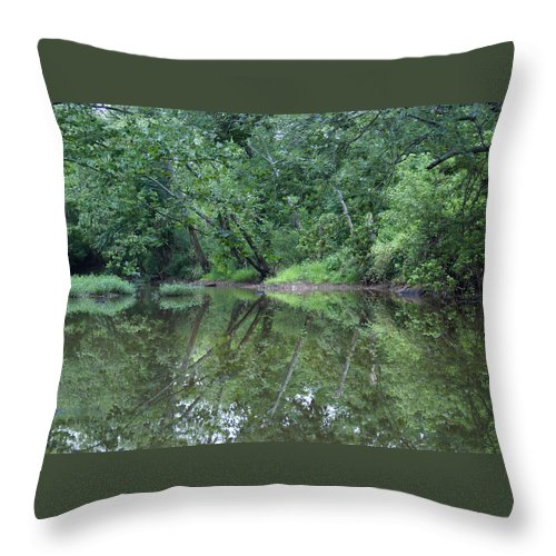 Water Throw Pillow featuring the photograph Reflection by Heidi Poulin