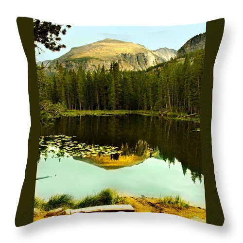 Reflection Throw Pillow featuring the photograph Reflection by Marilyn Hunt