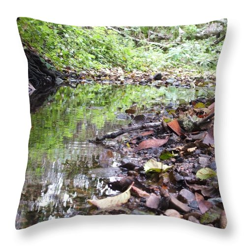 Woods Throw Pillow featuring the photograph Reflection by Shari Chavira