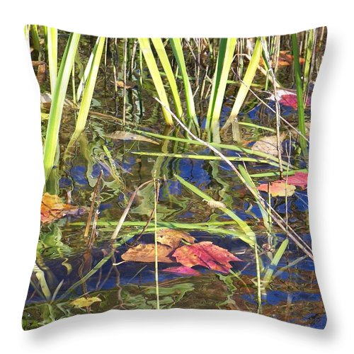 Water Throw Pillow featuring the photograph Reflections - Photograph by Jackie Mueller-Jones