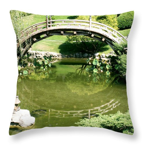 Nature Throw Pillow featuring the photograph Reflections by Amy Fose