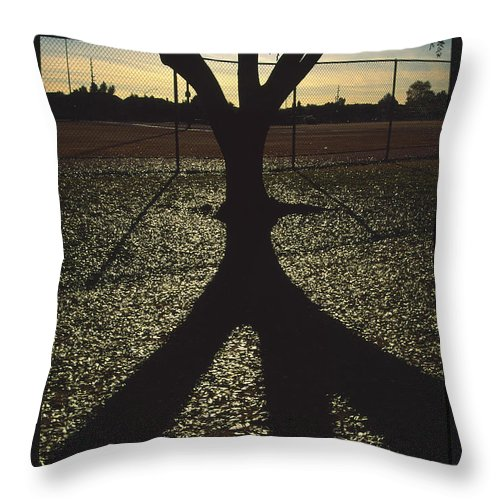 Tree Throw Pillow featuring the photograph Reflections in a Park by Randy Oberg