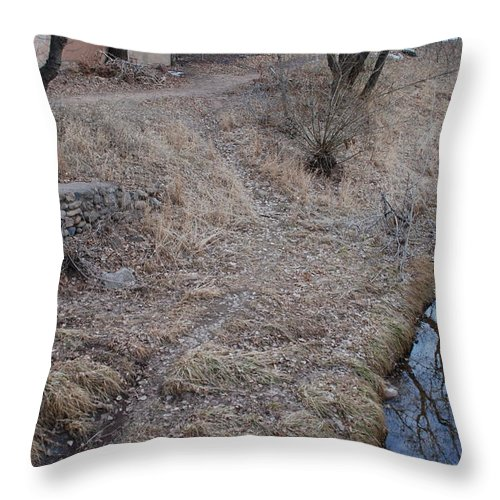 Water Throw Pillow featuring the photograph Reflections In The River by Rob Hans