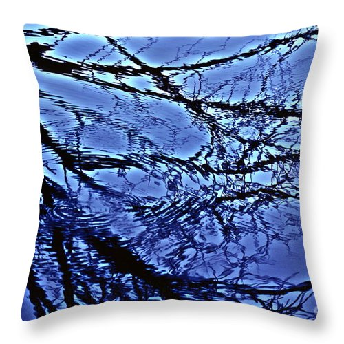 Reflections Throw Pillow featuring the photograph Reflections by Joanne Smoley