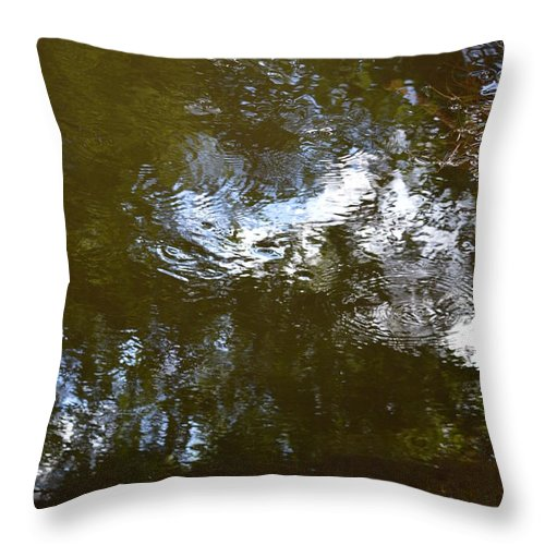 Landscape Throw Pillow featuring the photograph Reflections No2 by David Dand