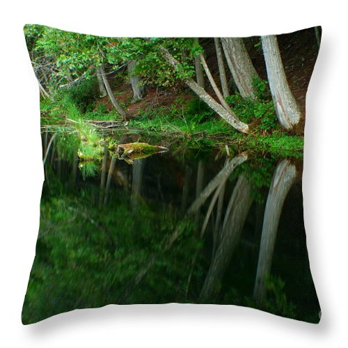 Forest Throw Pillow featuring the photograph Reflections of a forest by Idaho Scenic Images Linda Lantzy