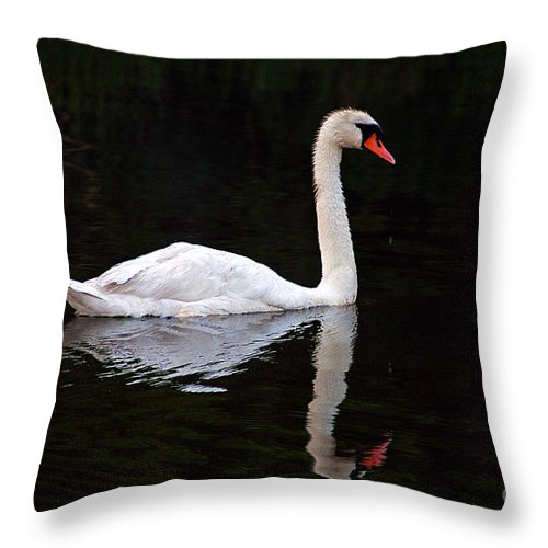 Clay Throw Pillow featuring the photograph Reflections Of A Swimming Swan by Clayton Bruster