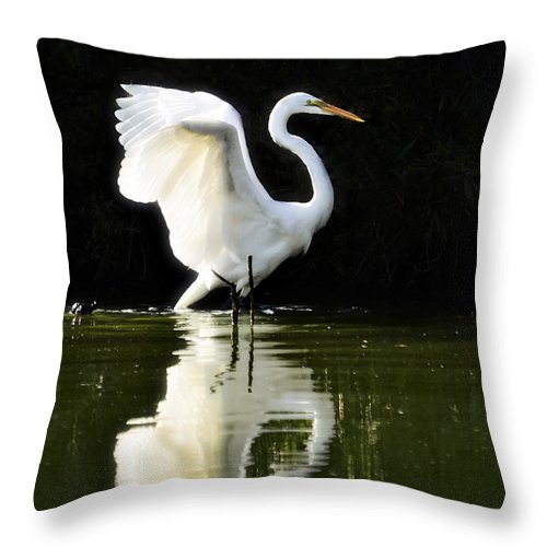 Great White Egret Throw Pillow featuring the photograph Reflections Of An Angel by Saija Lehtonen