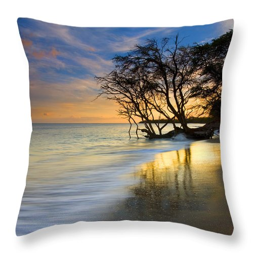 Waves Throw Pillow featuring the photograph Reflections Of Paradise by Mike Dawson