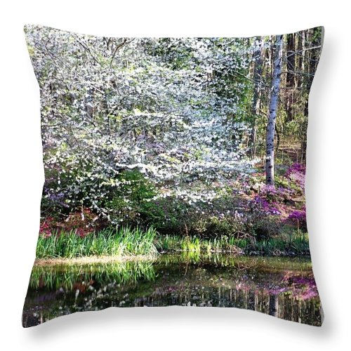 Gardens Throw Pillow featuring the photograph Reflections Of Spring by Gayle Miller