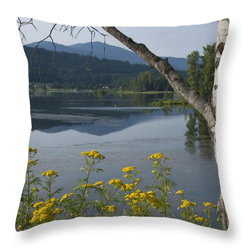 Landscape Throw Pillow featuring the photograph Reflections Of Summer by Idaho Scenic Images Linda Lantzy