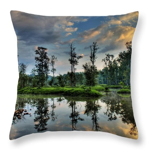 River Throw Pillow featuring the photograph Reflections Of The Morning by Tim Wilson