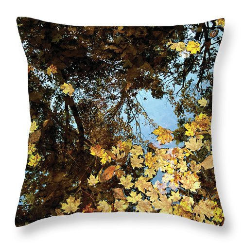 Reflection Throw Pillow featuring the photograph Reflections by Richard Larson