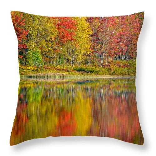 Fall Foliage Throw Pillow featuring the photograph Canaan Valley West Virginia Reflections by Rick Dunnuck