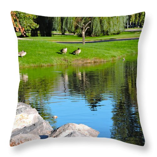 Reflections Throw Pillow featuring the photograph Reflections by Roberts Photography