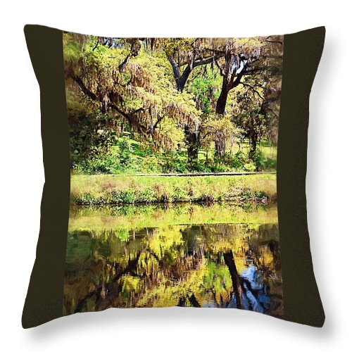 Landscape Throw Pillow featuring the photograph Reflective Live Oaks by Donna Bentley