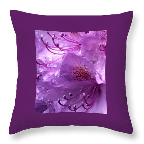 Throw Pillow featuring the photograph Refreshing Rain Close Up by Helene Fallstrom