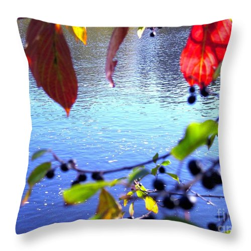 Water Throw Pillow featuring the photograph Refreshing View by Sybil Staples