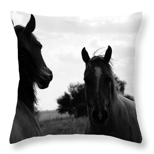 Horse Throw Pillow featuring the photograph Regal by Elizabeth Hart