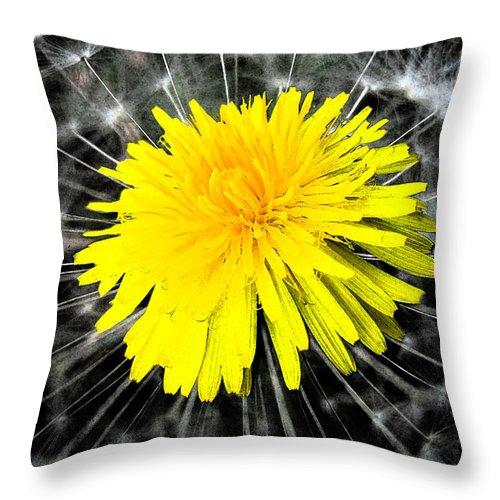 Abstract Art Throw Pillow featuring the photograph Regeneration by Brian Roscorla