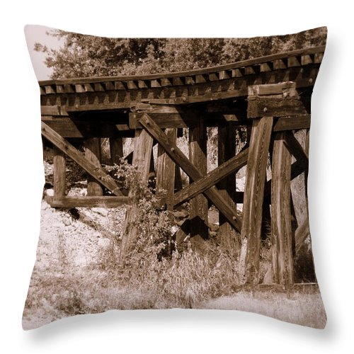 Rail Throw Pillow featuring the photograph Relic by Elizabeth Hart