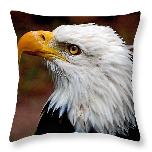 Bald Throw Pillow featuring the photograph Reminiscent Bald Eagle by Donna Proctor
