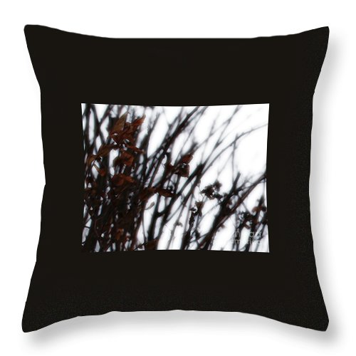 Reeds Throw Pillow featuring the photograph Remnant by Linda Shafer