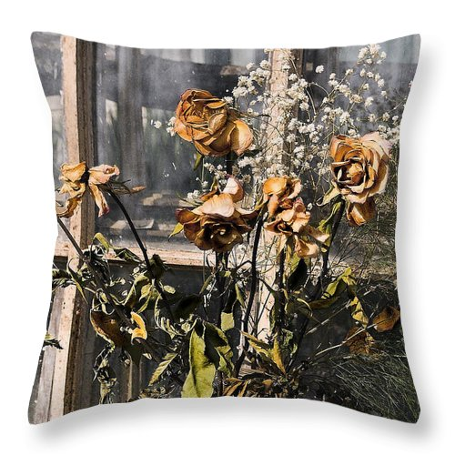 Windows Throw Pillow featuring the photograph Remnants of the Past by Linda McRae